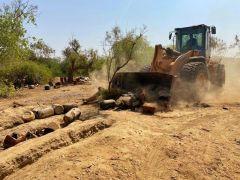 باقتلاع أشجار الأثل.. ضبط موقع للتفحيم واستخراج القطران تديره عمالة مجهولة (صور)