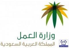 وزارة العمل توقف الخدمات عن عدد من المنشآت وتحيل الاوراق للأمارة وهيئة مكافحة الفساد