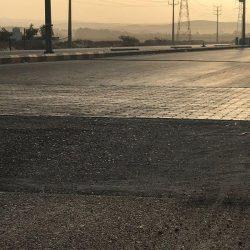 القبض على شخصين ثبت تورطهما في كسر زجاج المركبات وسرقة محتوياتها في الرياض