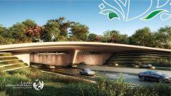 انطلاق الأعمال الإنشائية في حديقة الملك سلمان.. وترسية عقود بـ3.8 مليار ريال على شركات وطنية
