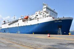 بالصور.. ميناء جازان يستقبل أول شحنة من الأنعام تقدر بأكثر من 5 آلاف رأس