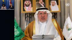 الربيعة: المملكة قدمت لليمن خلال 6 سنوات أكثر من 18 مليار دولار