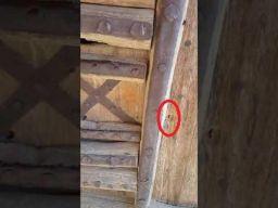 بالفيديو.. تعرّف على سن الرمح الموجودة في باب قصر المصمك ومن رماها