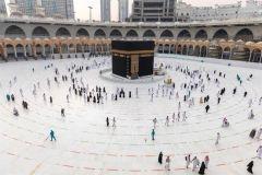 أكثر من 500 شركة عمرة تتأهب للمرحلة الثالثة لأداء العمرة والصلاة بالمسجد الحرام